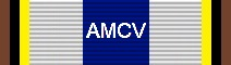 Awarded for 100,000 Miles Flown