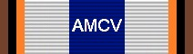 Awarded for 10,000 Miles Flown