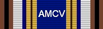 Awarded for 100 Flight Hours
