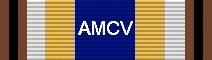Awarded for 100 Flights