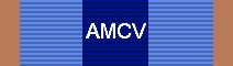 Awarded for Each Year of Service