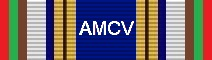 Awarded for 250 Flight Hours