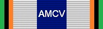 Awarded for 50,000 Miles Flown