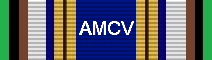 Awarded for 500 Flight Hours