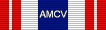 For completing the Tour: Mobilization: Afghanistan War .