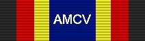 For completing the Tour: C-17 Training Flights.