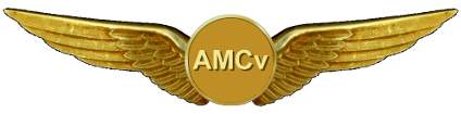 AFv Pilot Wings